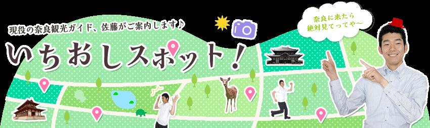 現役の奈良観光ガイドがお届けするいちおしスポット!