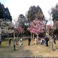 kataoka_web_2